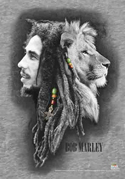 Bob Marley - Profiles - Fabric Music Poster